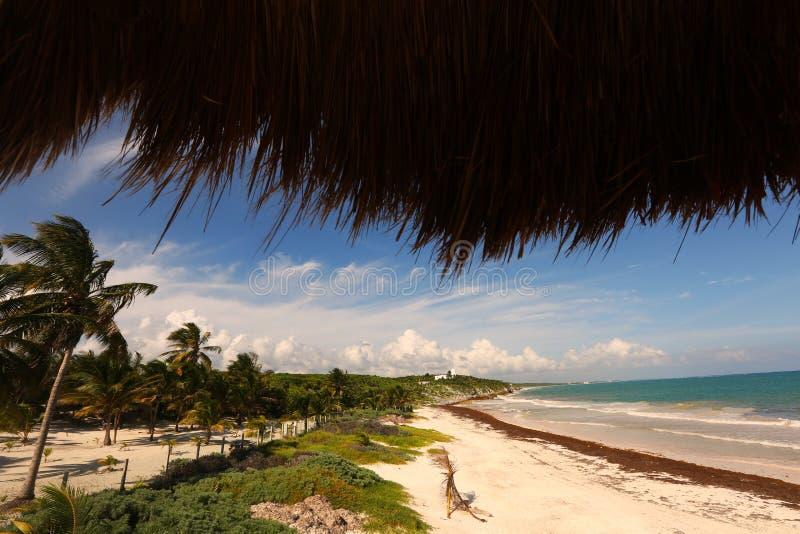 Panoramablick des Meeres und des Strandes stockbilder