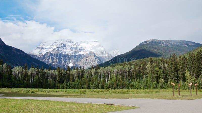 Panoramablick des szenischen Robson-Gebirgs- und -kiefernwaldes im Sommer lizenzfreie stockfotos