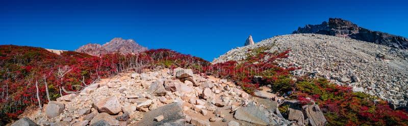 Panoramablick Nationalparks Torres Del Paine, seiner Wälder und der Gipfel am goldenen Herbst und am blauen Himmel, Patagonia, Ch stockbilder