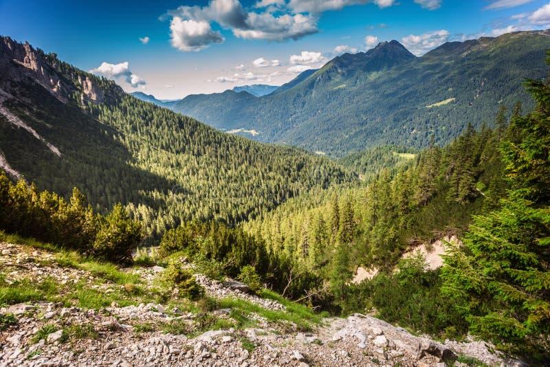 Panoramablick von den Alpen nahe San Martino di Castrozza stockfoto