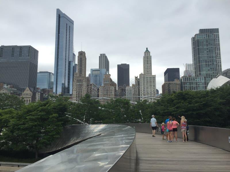 Panoramablick von im Stadtzentrum gelegenem Chicago lizenzfreies stockfoto