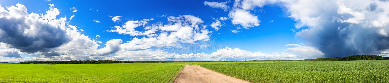 Panoramablick von landwirtschaftlichen Feldern mit Weizen und Roggen stockbilder