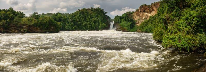 Panoramablick von Murchison Falls in Uganda lizenzfreie stockfotos