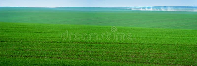 Panoramablick von schönen agicultural Feldern im Herbst stockbilder