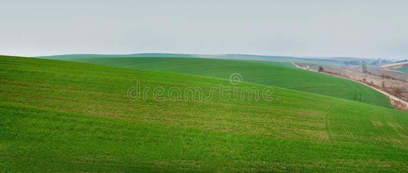 Panoramablick von schönen agicultural Feldern und von Schotterweg stockfoto