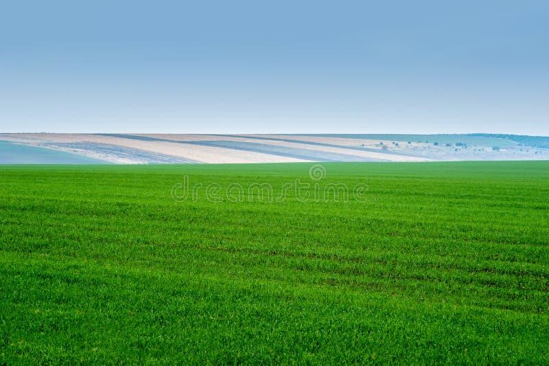 Panoramablick von schönen agicultural Feldern und von Schotterweg stockfotos