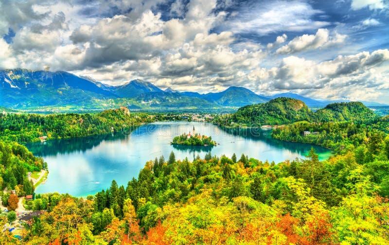 Panoramablick von See blutete mit der Insel in Slowenien stockbilder