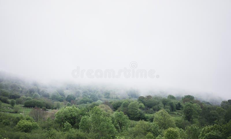 Panoramahorisontsikten av f?r den Spanien f?r dimmiga kullar f?r landskap den nordliga solnedg?ngen skogen i det naturliga h?stla royaltyfria foton
