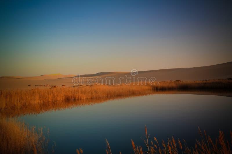 Panoramalandschap bij Grote zandoverzees en meer rond Siwa-oase bij zonsondergang, Egypte stock foto