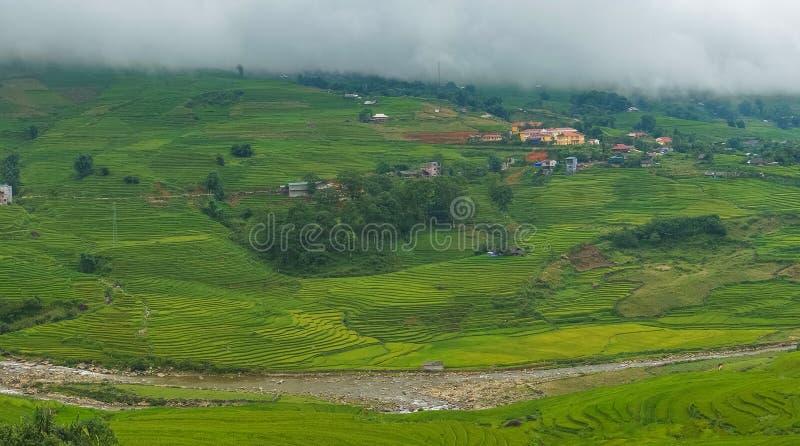 Panoramalandschap van de spectaculaire vallei van Hoa Muong met rijst fie stock foto