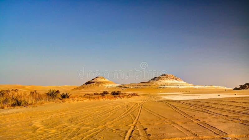 Panoramalandskap på det stora sandhavet runt om den Siwa oasen, Egypten royaltyfri foto