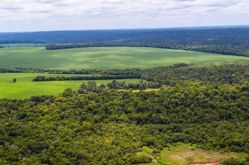 Panoramamening van boslandschap met weiden en gebieden royalty-vrije stock foto's