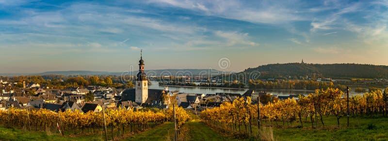 Panoramamening van wijngaard over de charmante stad van Rüdesheim am Rijn, Duitsland royalty-vrije stock afbeelding
