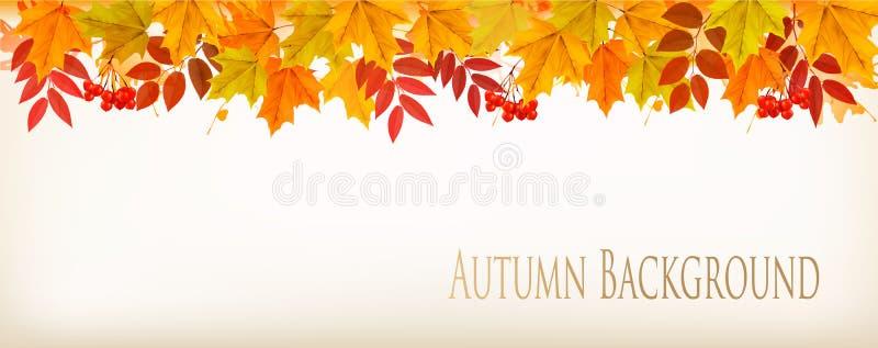 Panoramanedgång Autumn Colorful Leaves Background royaltyfri illustrationer
