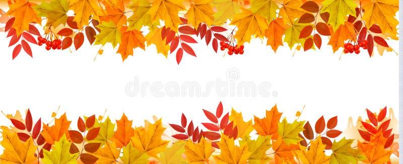 Panoramanedgång Autumn Colorful Leaves Background vektor illustrationer