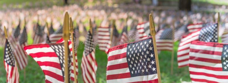 Panoramareihe amerikanischer Rasenflaggen auf grüngrünem Gras am Gedächtstag in Dallas, Texas, USA stockbild