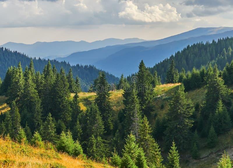 Panoramasicht auf die Felsen von Ciucas, Rumänien lizenzfreies stockbild
