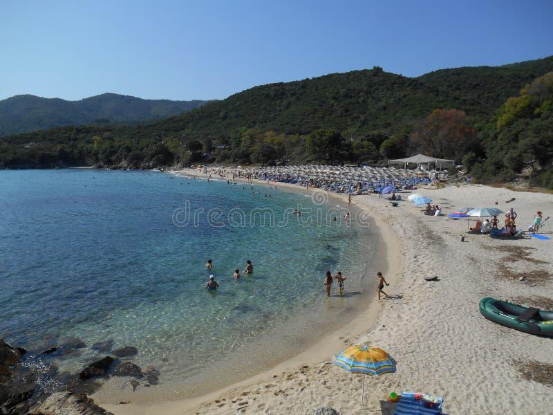 Panoramasikt av Ammos för sandig strand, nära Olympiada, Grekland och det ljusa klara blåa havet fotografering för bildbyråer