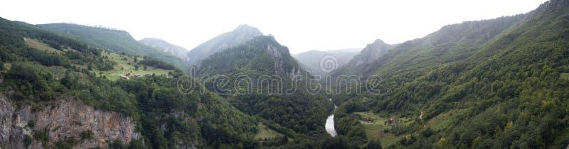 Panoramasikt på kanjonen i Montenegro royaltyfri fotografi