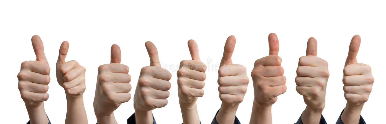Panoramatic photo of many thumbs up. Isolated on white background royalty free stock images