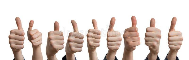 Panoramaticfoto van vele duimen omhoog Geïsoleerdj op witte achtergrond royalty-vrije stock afbeeldingen