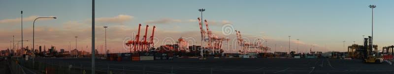 Panoramatiska vyer av långa portkranar som står höga och lastar ett fartyg i hamn med transportbehållare i Port Melbourne. royaltyfri bild