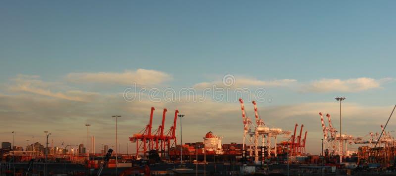 Panoramatiska vyer av långa portkranar som står höga och lastar ett fartyg i hamn med transportbehållare i Port Melbourne. arkivfoto