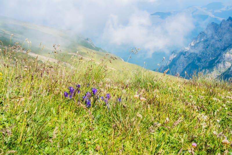 Panoramautsikt över de Carpatian bergen och ett stort dimmamoln fotografering för bildbyråer