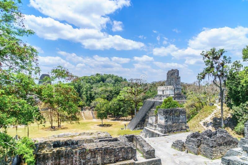 Panoramautsikt över Mayapyramider och tempel i nationalparken Tikal i Guatemala arkivbilder