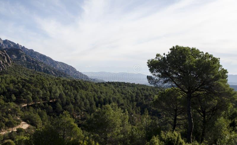 Panoramautsikt av berg och skogbanan på den Montserrat mountaen arkivfoto