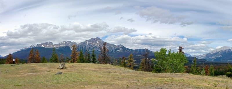 Panoramautsikt av de steniga bergen i Jasper National Park arkivbild