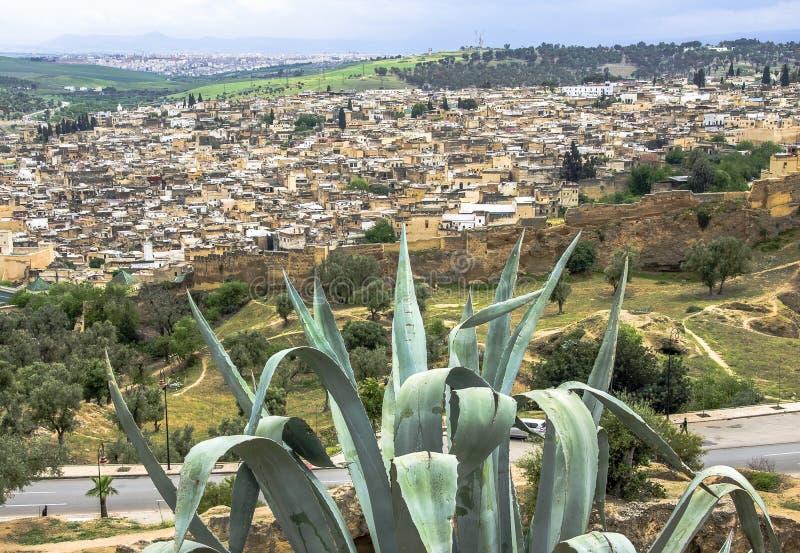 Panoramautsikt av den Fez Fes mitten, Marocko arkivbilder