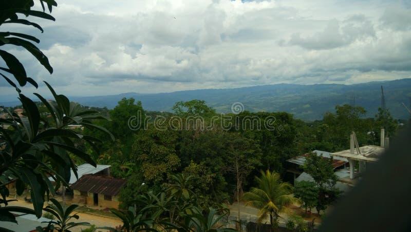 Panoramautsikt av den peruanska djungeln arkivbild