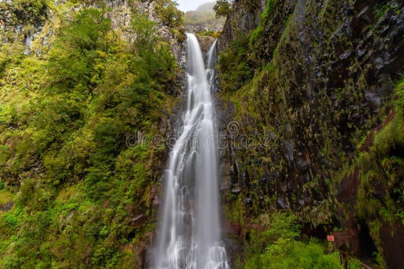 Panoramautsikt av den Risco vattenfallet, madeira, Portugal royaltyfri bild