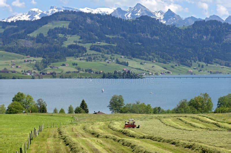 Panoramautsikt av den schweiziska bergbyn i fjällängar royaltyfria foton
