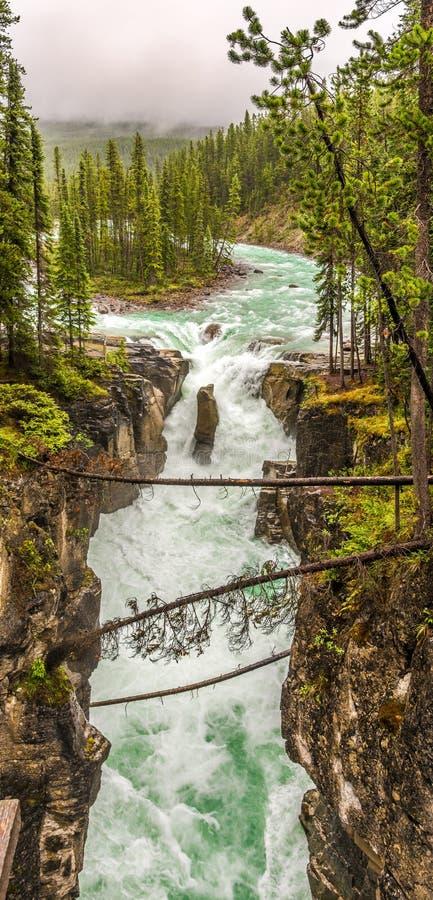 Panoramautsikt av den Sunwapta Falls klyftan i Jasper National Park - kanadensare Rocky Mountains arkivbilder