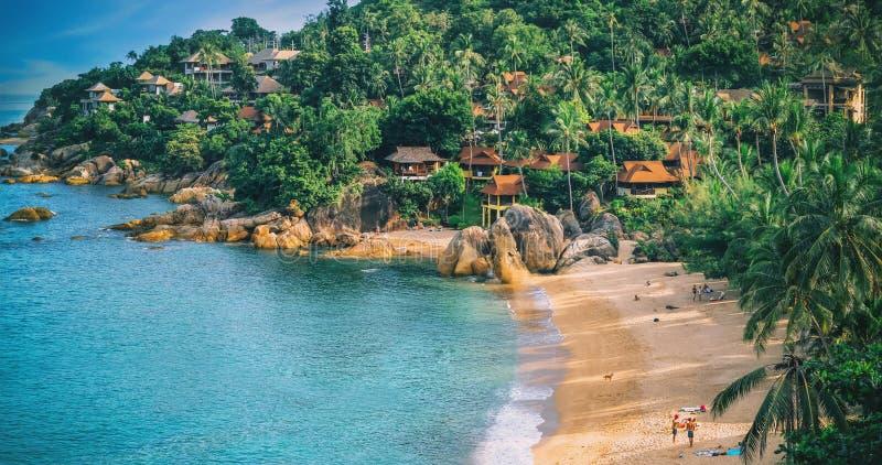Panoramautsikt av den tropiska stranden med kokosnötpalmträd royaltyfri foto