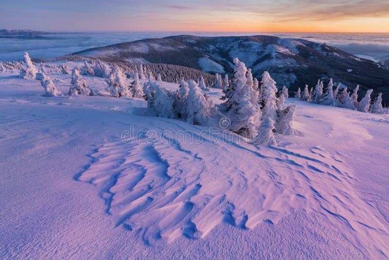 Panoramautsikt av h?rligt landskap f?r vinterunderlandberg i aftonljus p? solnedg?ngen Berg ovanf?r molnen Jul royaltyfri bild