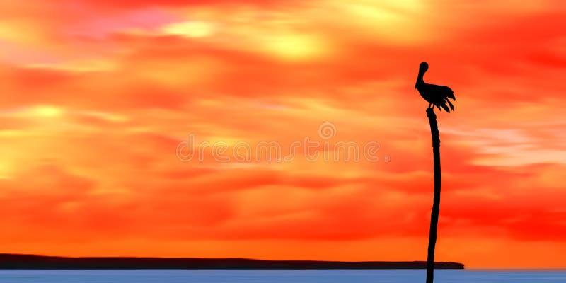 Panoramautsikt av havet och himmel och en pelikankontur Trinidad och Tobago på skymning royaltyfri foto
