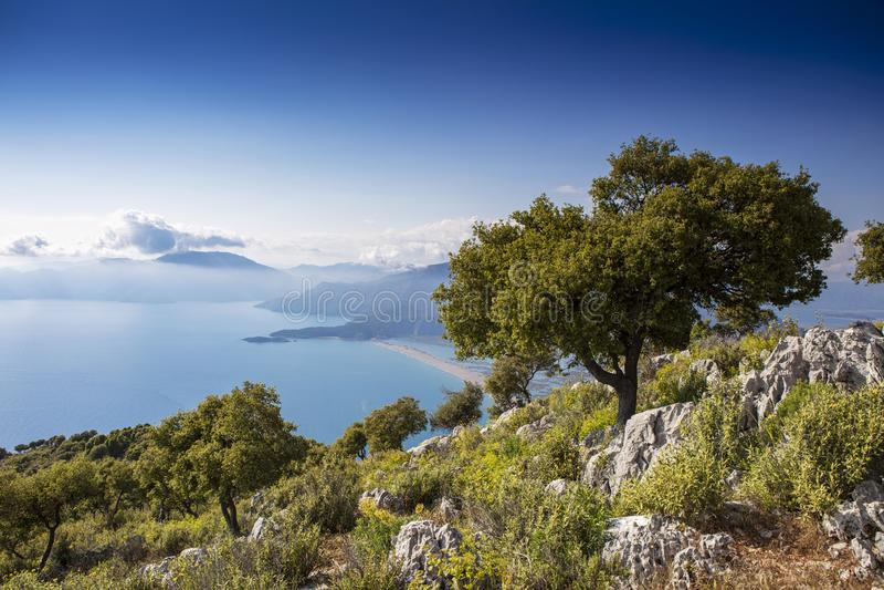 Panoramautsikt av iztuzustranden i Dalyan, Turkiet royaltyfri foto