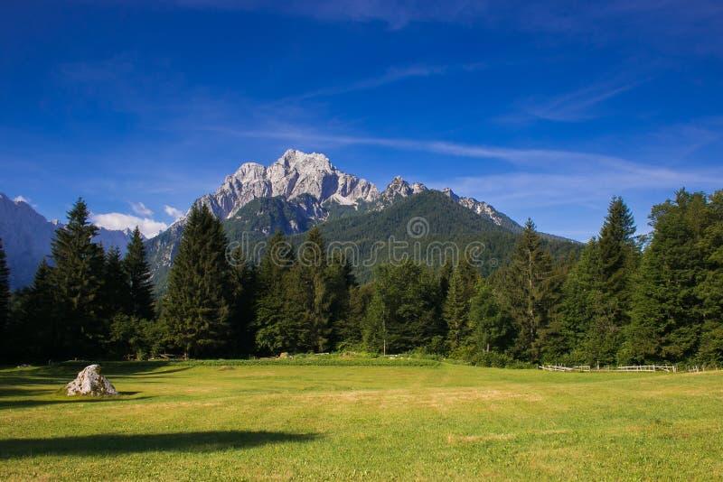 Panoramautsikt av Julian fjällängar nära Podkoren i Slovenien royaltyfria bilder