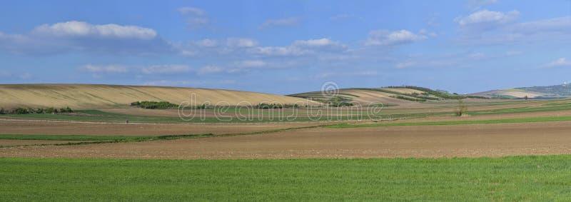 Panoramautsikt av kultiverad jordbruksmark med himmel royaltyfria foton