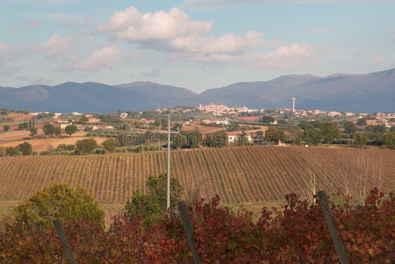 Panoramautsikt av Montefalco royaltyfri bild