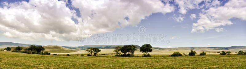 Panoramautsikt av Ngorongoro royaltyfri bild