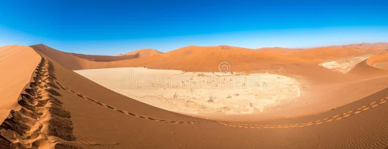 Panoramautsikt av sanddyn i Deadvlei, Sossusvlei, Namibia royaltyfria foton
