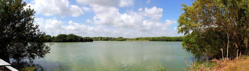 Panoramautsikt av sjön i Evergladesnationalpark fotografering för bildbyråer