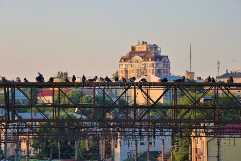 Panoramautsikt av staden av Odessa, Ukraina royaltyfri foto