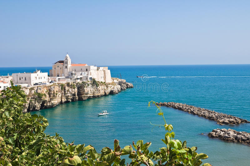 Panoramautsikt av Vieste. Puglia. Italien. arkivbilder
