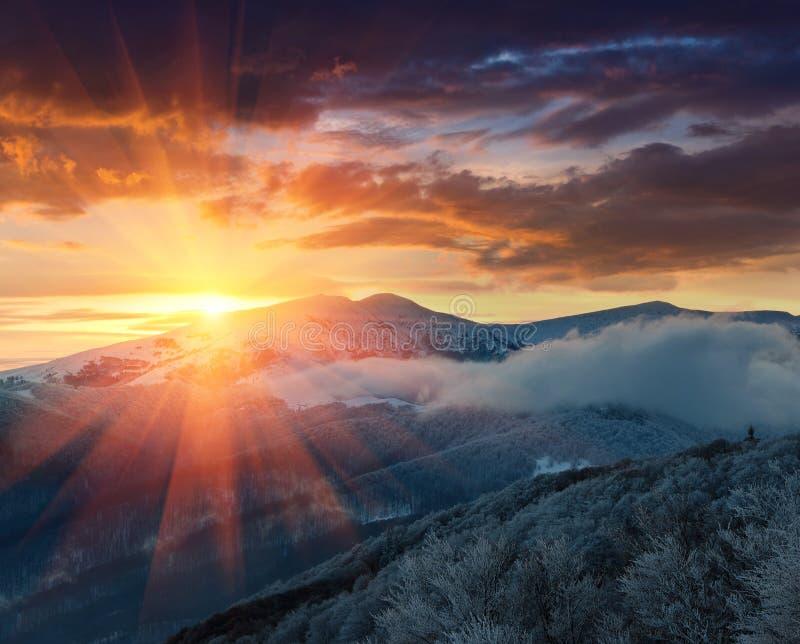 Panoramautsikt av vinterberg på soluppgång Landskap med dimmiga kullar och träd som täckas med rimfrost royaltyfri foto