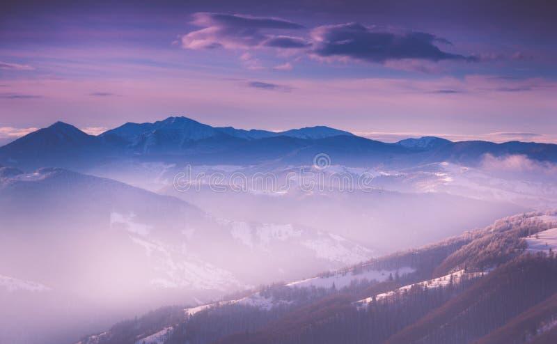 Panoramautsikt av vinterberg på soluppgång Landskap med dimmiga kullar och träd som täckas med rimfrost arkivfoton